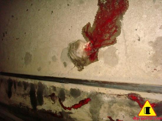 отрезанная голова в крови