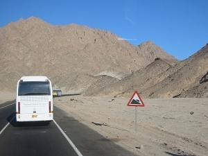 dtp-egipet-20112010